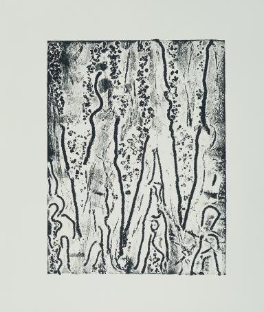 Femmes dans les bois